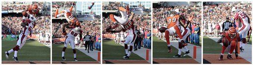 NFL: Bengals 23, Cardinals 16; Cincinnati gana con TD acrobático